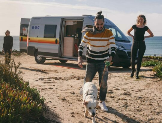 10 Tips for an Awesome Road Trip with a Dog